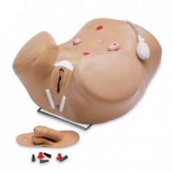 Simulator avansat pentru cateterizare urinara la barbat si femeie